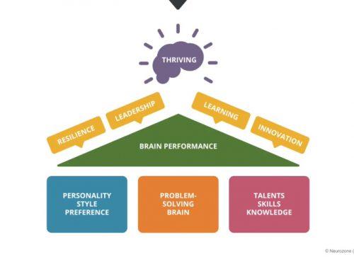 Neurozone Assessment